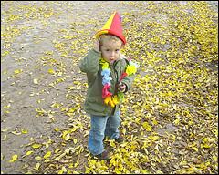 19 oktober 2008 in foto's