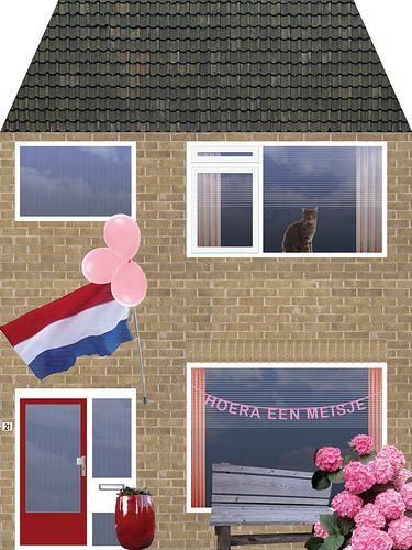Geboortekaartje Willemijn Steeman