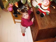 11 december 2009 in foto's